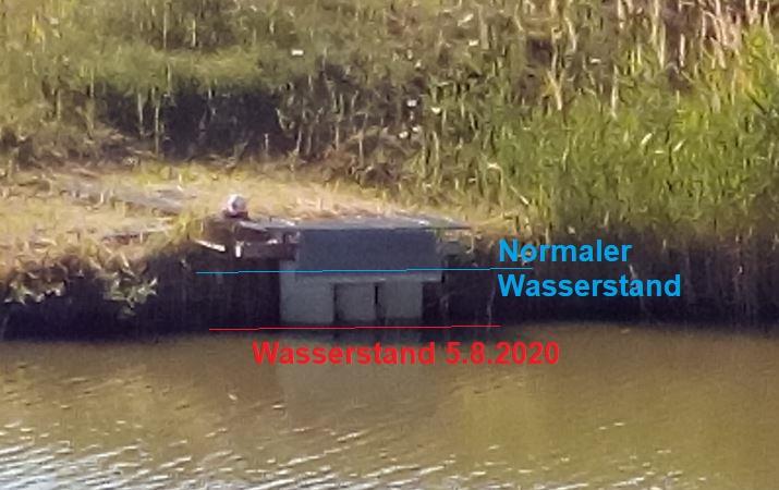 Wasserstand-5.8.2020_2020-08-07.JPG